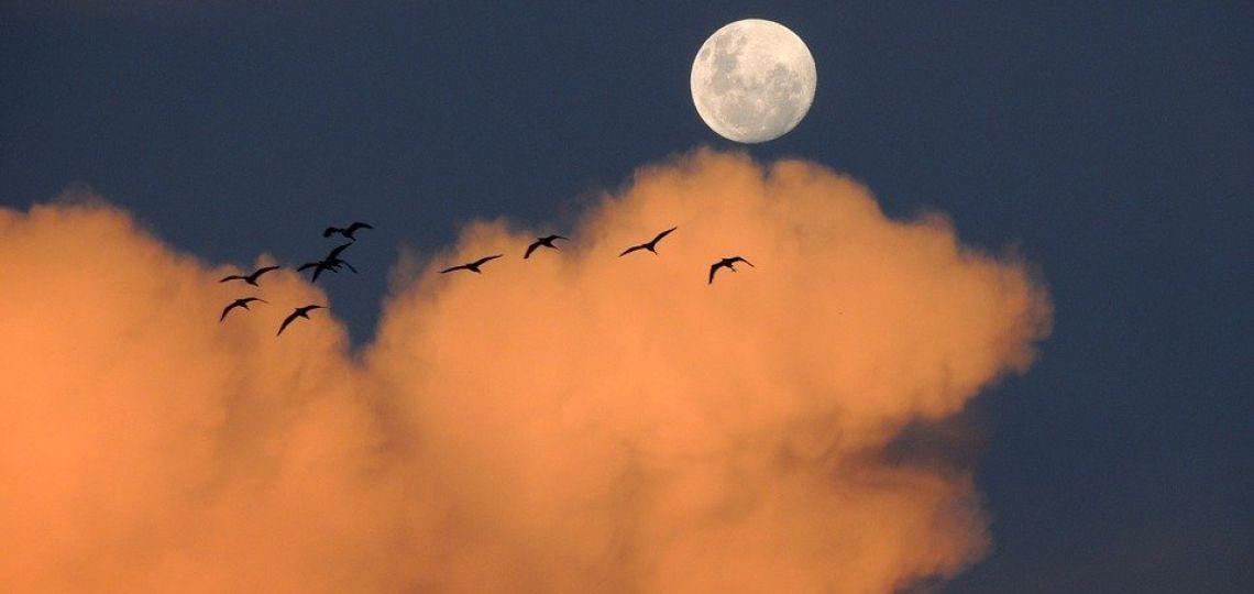 Luna de hoy en Sagitario, la más expansiva: así afecta a tu signo el 25 de agosto