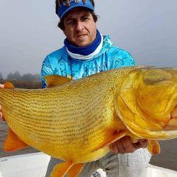 A través de grandes trofeos revivimos capturas de dorados, surubíes, patíes y pacúes en los ríos Paraná y Uruguay