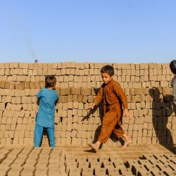 Los niños pequeños recogen ladrillos mientras trabajan como obreros en una fábrica de ladrillos en las afueras de Herat.   Foto:HOSHANG HASHIMI / AFP