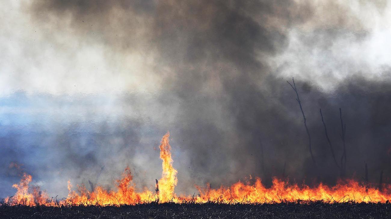 incendios en el delta.