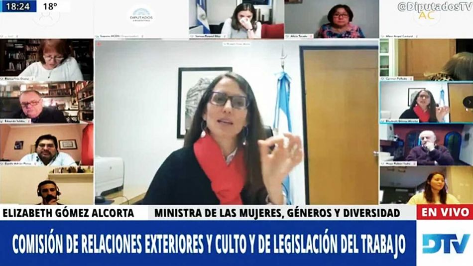 20200830_elizabeth_gomez_alcorta_mujeres_generos_diversidad_capturapanatalla_g