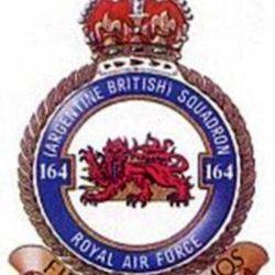 """El escudo del 164°: un león frente a un sol naciente, bajo el cual se leía el lema: """"Firmes volamos""""."""
