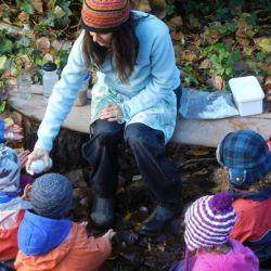 Actualmente muchos niños en el país se educan en el medio del bosque.