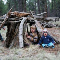 El entorno les ofrece recursos didácticos ilimitados: árboles, piedras, tierra, animales, etc.