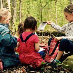 Al ser el bosque el aula, esta modalidad no requiere de una gran infraestructura.