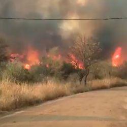 En la  Argentina, los incendios forestales ya han afectado más de 90.000 hectáreas y a 11 provincias.