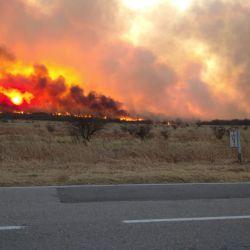El 90% de los incendios forestales que se están registrando en el país están asociados a la actividad humana.