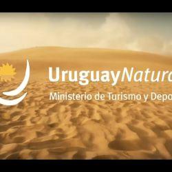El Ministerio de Turismo y Deportes está evaluando distintas alternativas para captar a los turistas argentinos y brasileños.