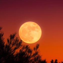 Luna de hoy en Tauro