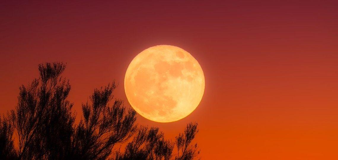 Luna de hoy en Tauro: así afecta a tu signo el 4 de octubre