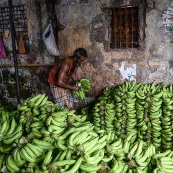 Un trabajador arregla bananas en un mercado mayorista en Daca. | Foto:Munir Uz Zaman / AFP
