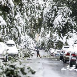 Un hombre intenta despejar ramas de nieve durante una tormenta de invierno a principios de la temporada en Boulder, Colorado. | Foto:Michael Ciaglo / Getty Images / AFP
