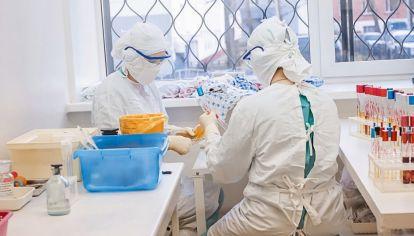 Uso del plasma contra el coronavirus