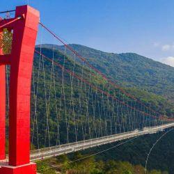 La estructura es sostenida por dos enormes torres que soportan la presión de los cables de acero.