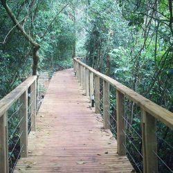 El Parque Nacional Salto Encantado es una de las 7 Maravillas Naturales de la Argentina.