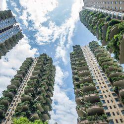 Apartamentos con balcones cubiertos de plantas en una comunidad residencial en Chengdu, en la provincia de Sichuan, suroeste de China. - Un proyecto de vivienda ecológica experimental en la ciudad de Chengdu, en el suroeste de China, parece haber sido invadido por sus propias plantas, y los medios estatales informaron que solo un puñado de compradores se han mudado.   Foto:STR / AFP