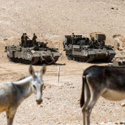 Los burros miran mientras detrás de los soldados israelíes están a bordo de vehículos de combate de infantería verificando su equipo, en un campo de entrenamiento militar cerca de la aldea de Yatta en el sur de la Cisjordania ocupada.   Foto:HAZEM BADER / AFP