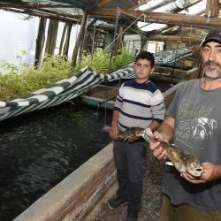 En primer lugar, van a registrar a todos los productores acuícolas de la provincia.