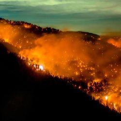 El incendio Bobcat continúa ardiendo en el Bosque Nacional Ángeles en el condado de Los Ángeles, al norte de Azusa, California. | Foto:Kyle Grillot / AFP