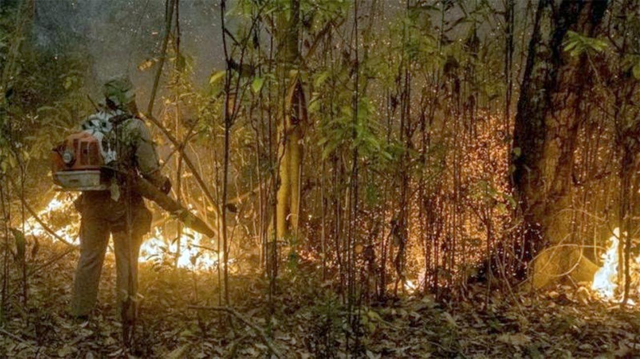 Incendio en Pantanal