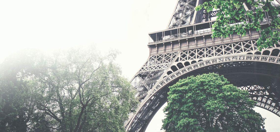 Bajo las garras de una parisina: La revelación