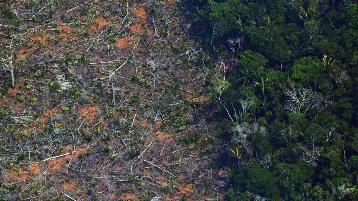This file aerial photo taken on August 23, 2019 shows a deforested piece of land in the Amazon rainforest near an area affected by fires, about 65 km from Porto Velho, in the state of Rondonia, in northern Brazil.