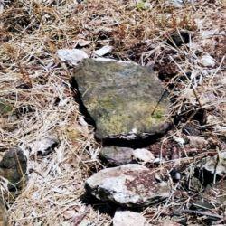 El INAH ya había alertado sobre una importante concentración arqueológica en la zona por la que pasaría el tren, la cual consta de alrededor de1.773 sitios arqueológicos.