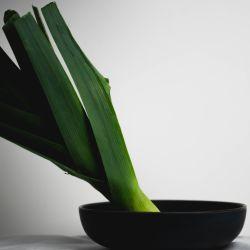 Una verdura de estación, accesible y muy rendidora.