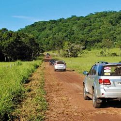 La caravana se adentra por rojizas sendas en lo profundo de la selva.