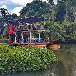 El grupo navega en una chalana por ríos que recorren las selva  matogrossense, que explota de vida salvaje.