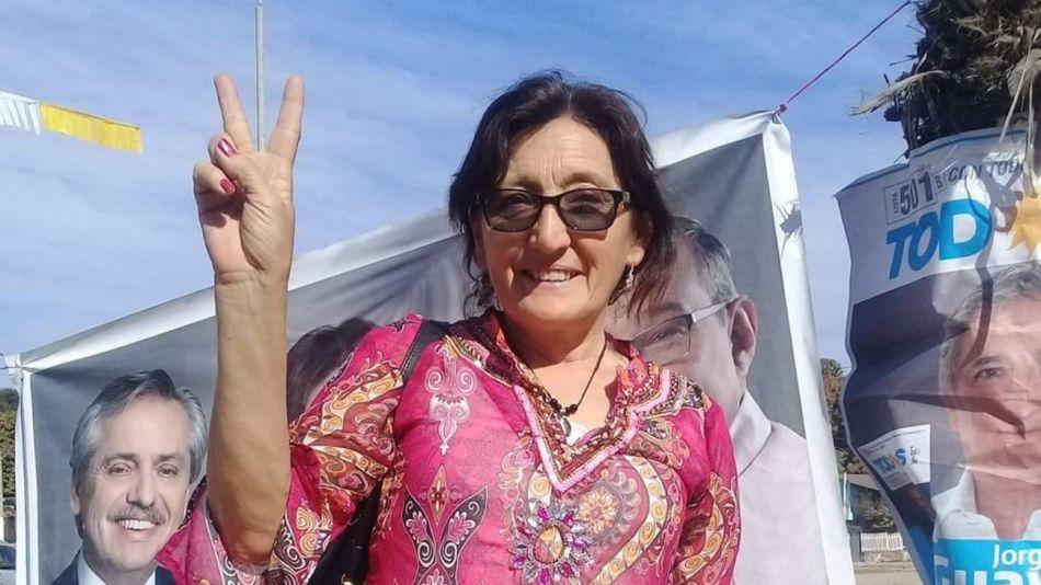 Alcira Elsa Figueroa reemplazo ameri