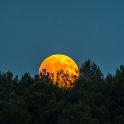 Luna de hoy en Acuario