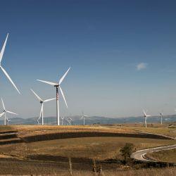 El parque está ubicado en el paraje Bajada Colorada, a unos 40 kilómetros de Piedra del Águila.
