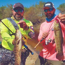 Seguimos disfrutando de la pesca.