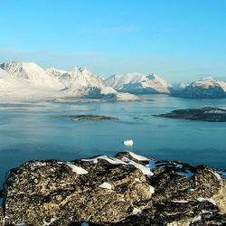 En 2019, la isla acusó la segunda menor superficie desde que comenzaron los registros hace 42 años.