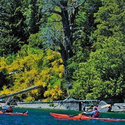 El kayak es uno de los vehículos de quienes recorren el lago.