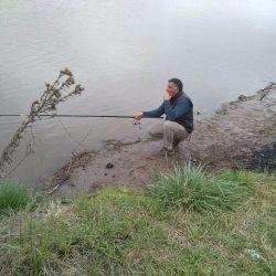 Carpas, bogas y bagres en Chadilauquen, La Pampa