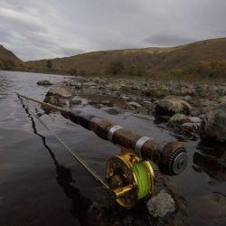 Cómo se prepara la temporada de pesca pospandemia en el sur.