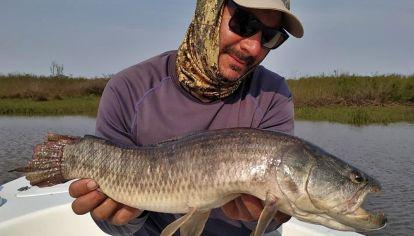 Pesca y pique en 240 ámbitos: dónde ir a tirar la caña