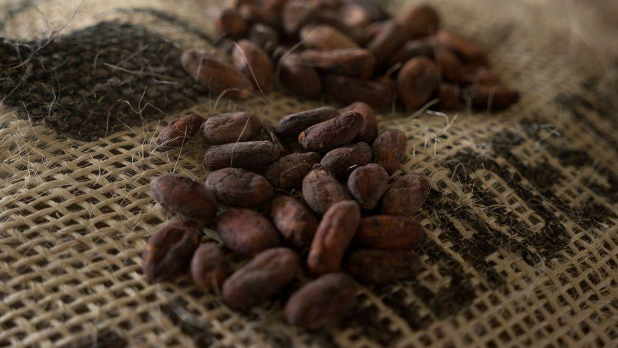 cae venta de cacao mundialmente