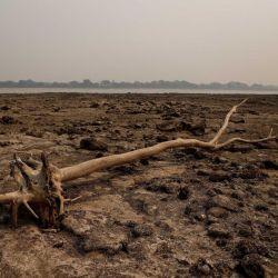El río Paraguay está cerca de igualar la hasta ahora mayor bajante histórica de 1969.