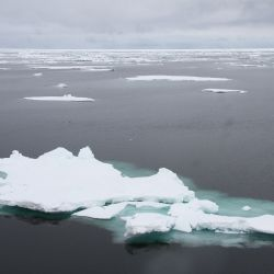 El objetivo es proteger entre 15.000 y 100.000 kilómetros cuadrados de hielo en el Estrecho de Fram o Beaufort Gyre en el Ártico.