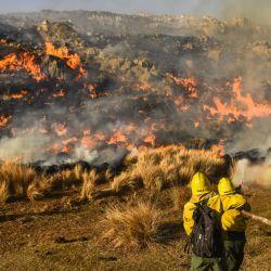 La ley busca proteger a las tierras quemadas de emprendimientos inmobiliarios.