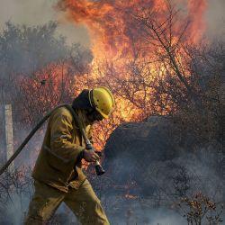 La prohibición de la venta de las zonas quemadas es por 20 años.