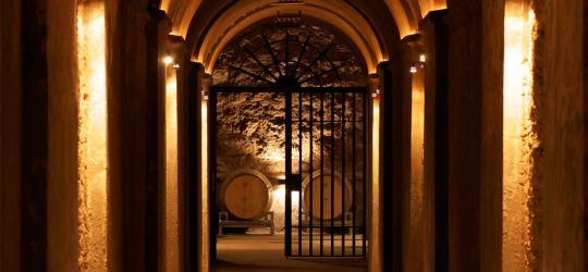 Conocé la herencia vitivinícola de Benegas Lynch