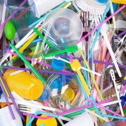 El Municipio de Ushuaia deberá generar campañas de reducción y reutilización de productos desechables.
