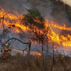 Incendios descontrolados en Córdoba | Foto:cedoc