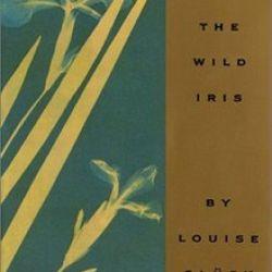 Las mejores obras de Louise Glück