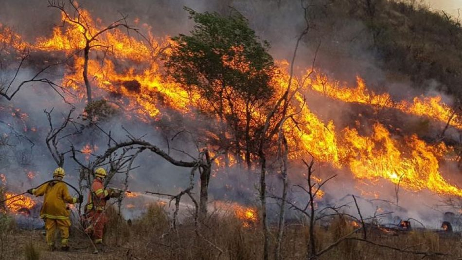 Quiénes están detrás de los incendios forestales en la Argentina