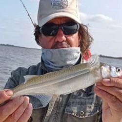 Dónde se puede ir a pescar el fin de semana del 10 de octubre de 2020. Ambitos habilitados y estado del pique.